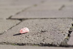 Pink used chewing gum spit out on the pavement