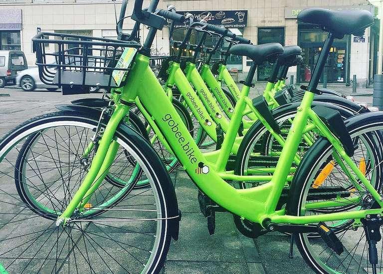 Gobee bikes in a row