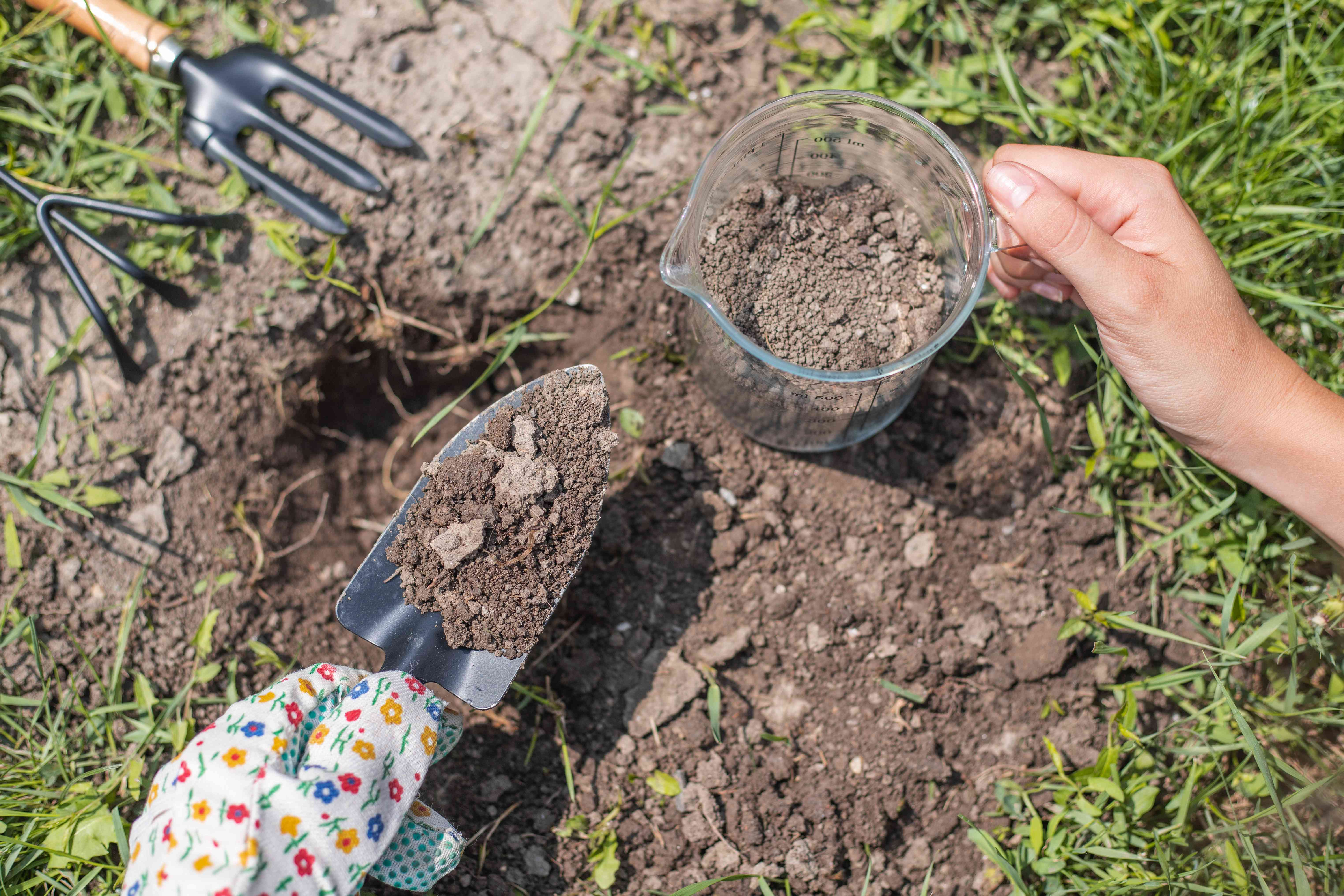 hand with gardening tools and glass measuring cup collecting soil for testing