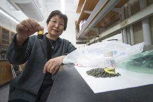 Scientist Linda Wang demonstrates plastic conversion technique