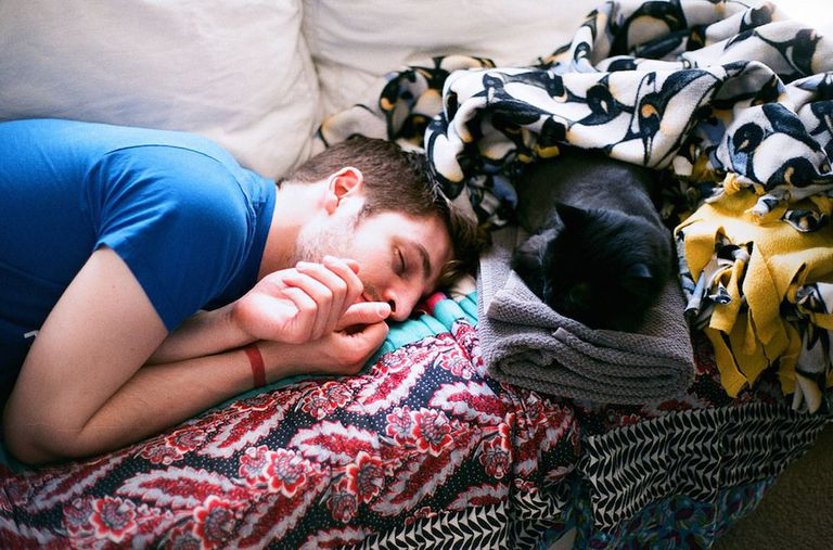 Si no dormiste lo suficiente anoche, toma una siesta hoy