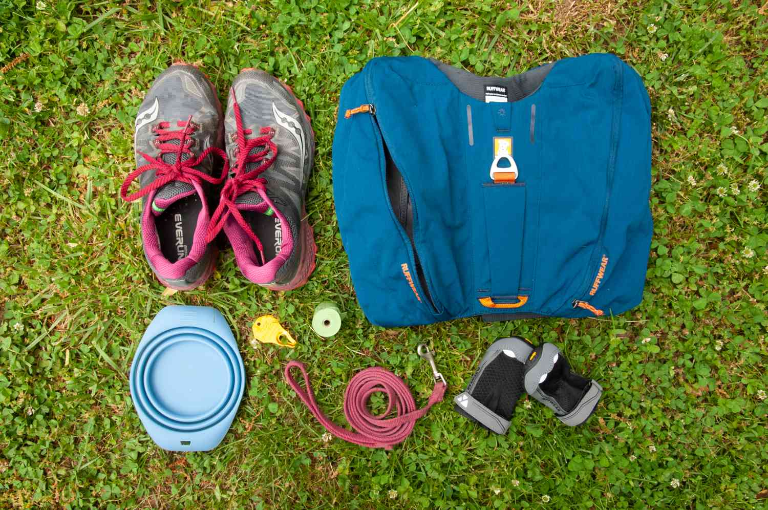 essential gear for hiking with dogs includes a good leash and water bowl