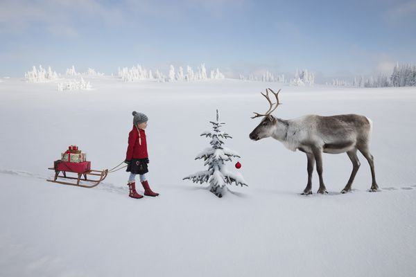 Girl with gifts and reindeer
