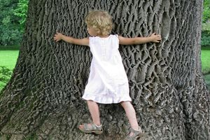 young girl hugging the trunk of a large oak tree