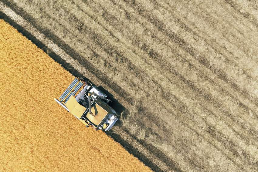 Combine Harvesting Grain collection