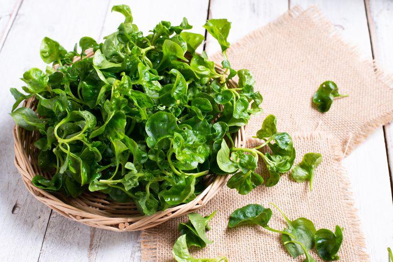 10 vegetales de gran potencia para comenzar a comer más