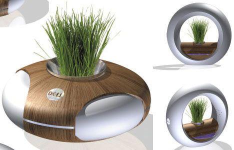 concept plant computer image