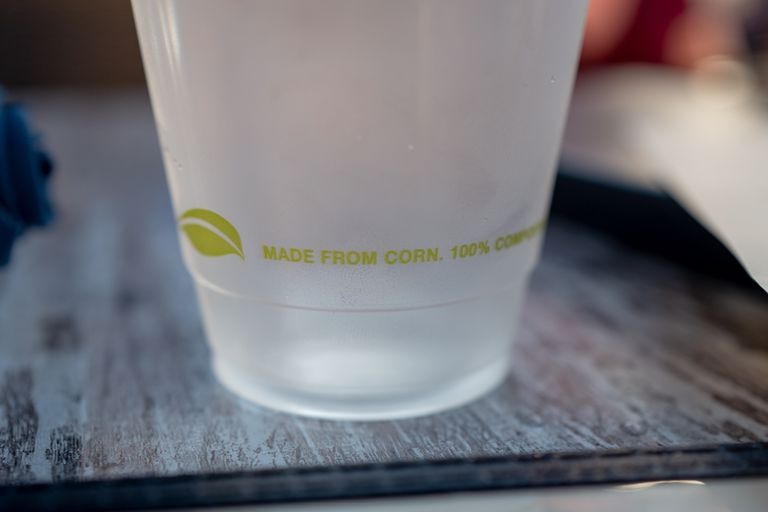 Cup Made From Corn