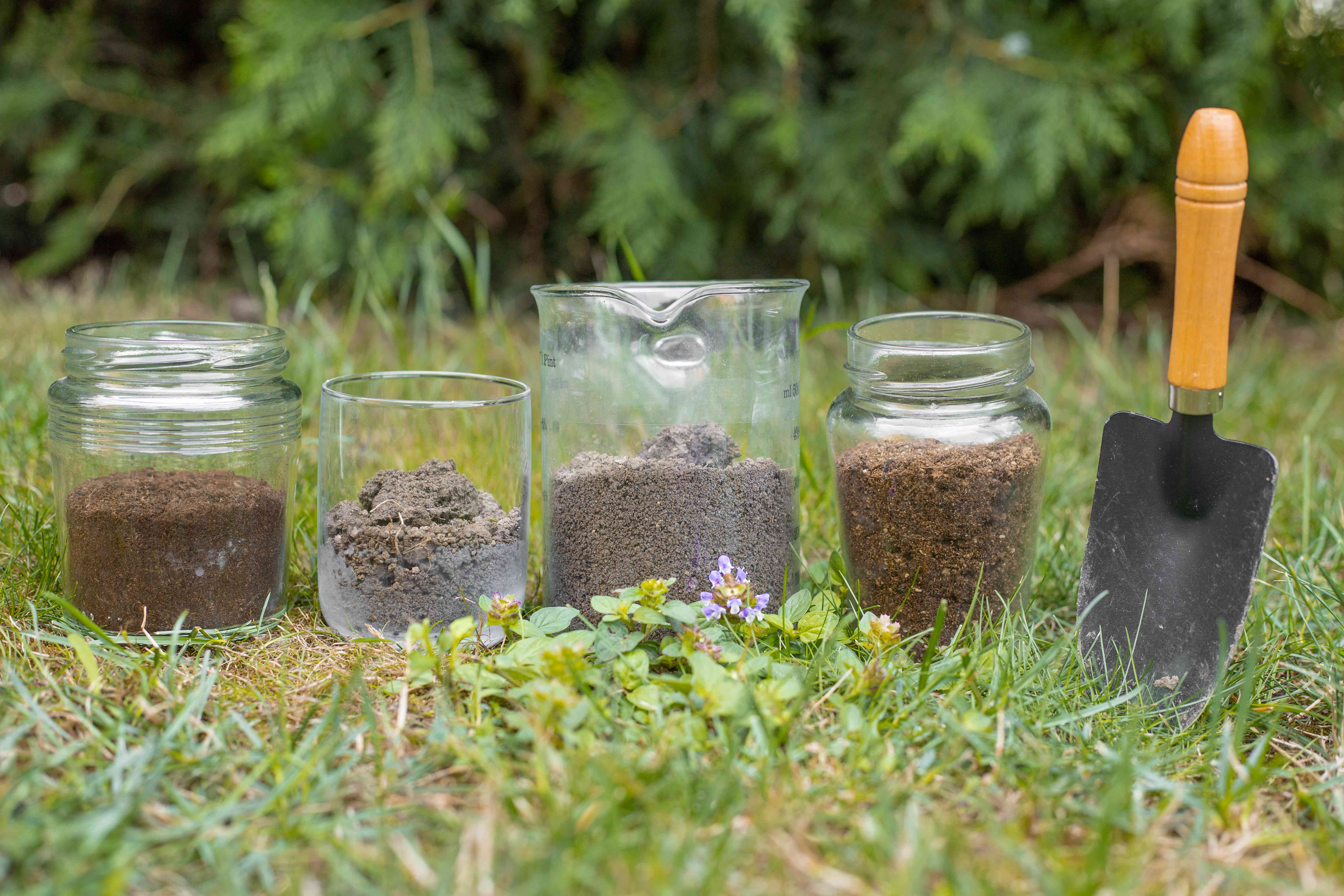 various soils in glass containers outside in grass ready for testing