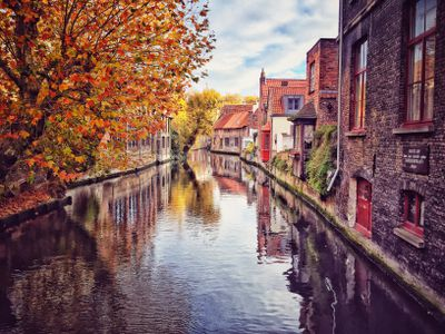 autumn trees on a quiet canal in Bruges, Belgium