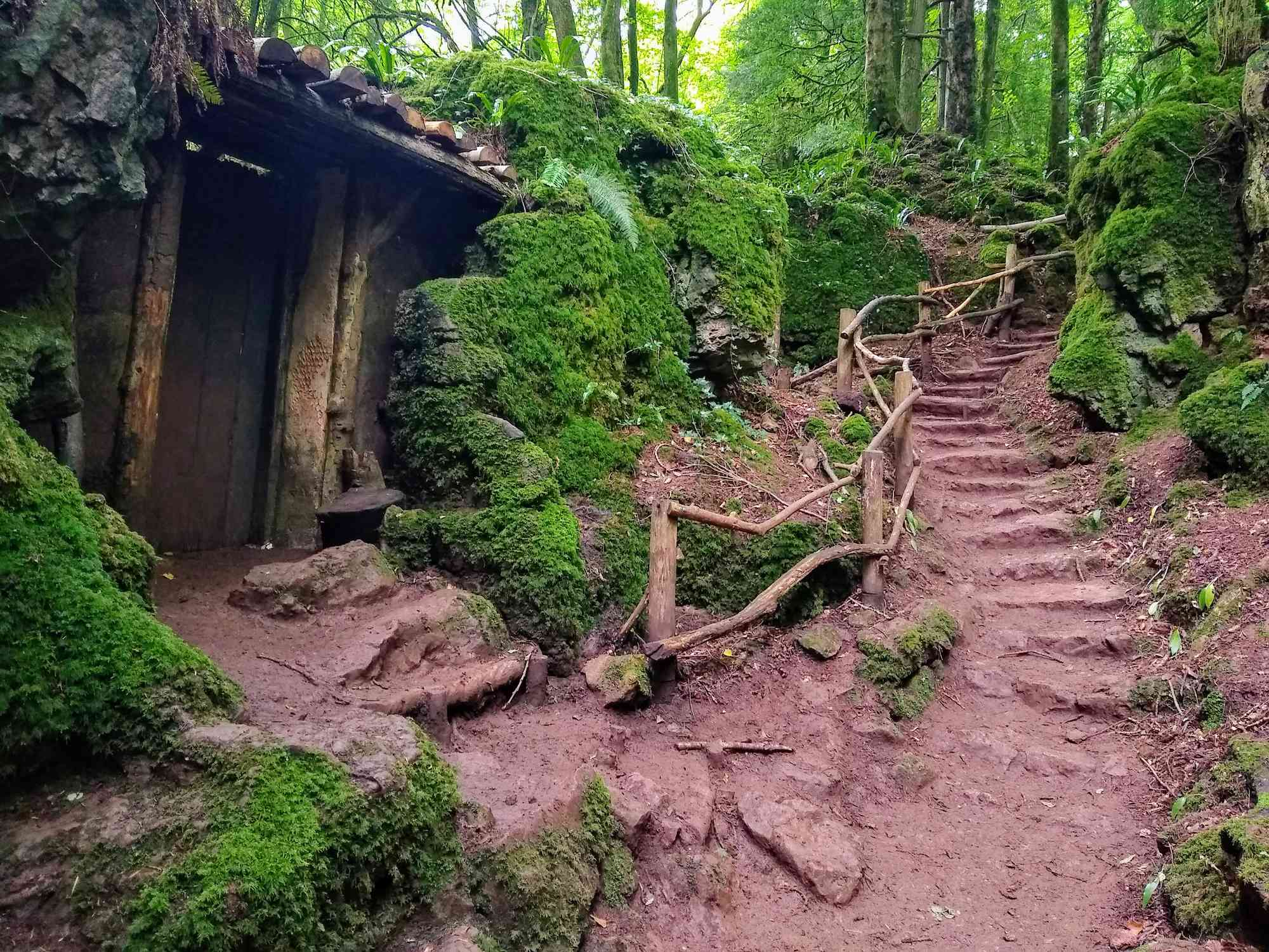 A wooden shack and stone staircase in a green forest