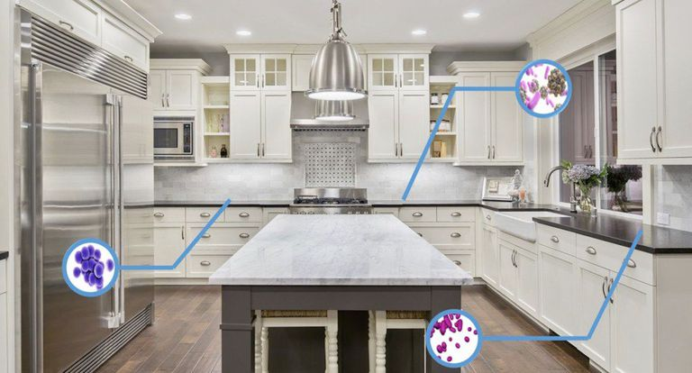White kitchen with indicators of where germs are likely to be