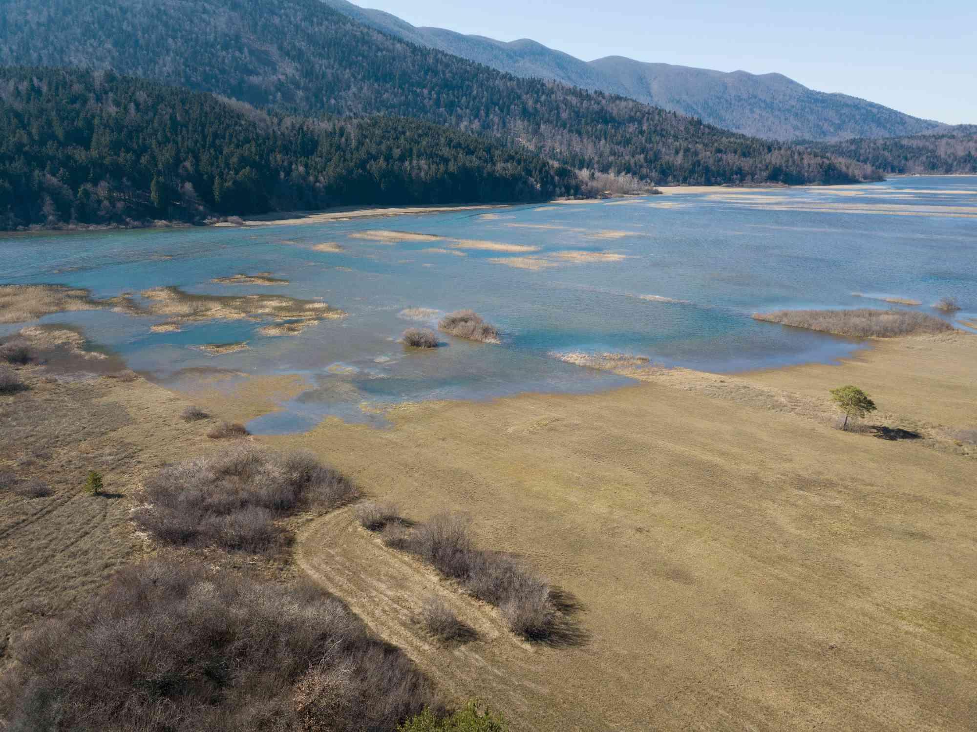A receding lake reveals grasslands beneath the water