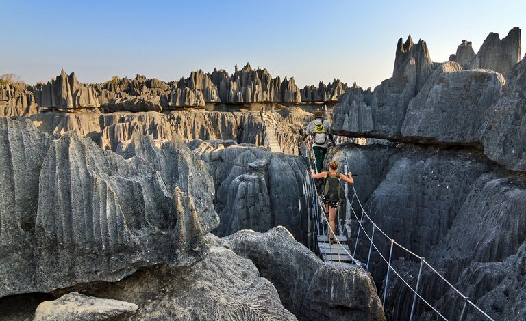 Experimente la belleza escarpada del 'bosque de piedra' de Madagascar