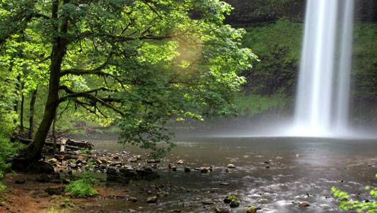 Silver Falls State Park: A User's Guide