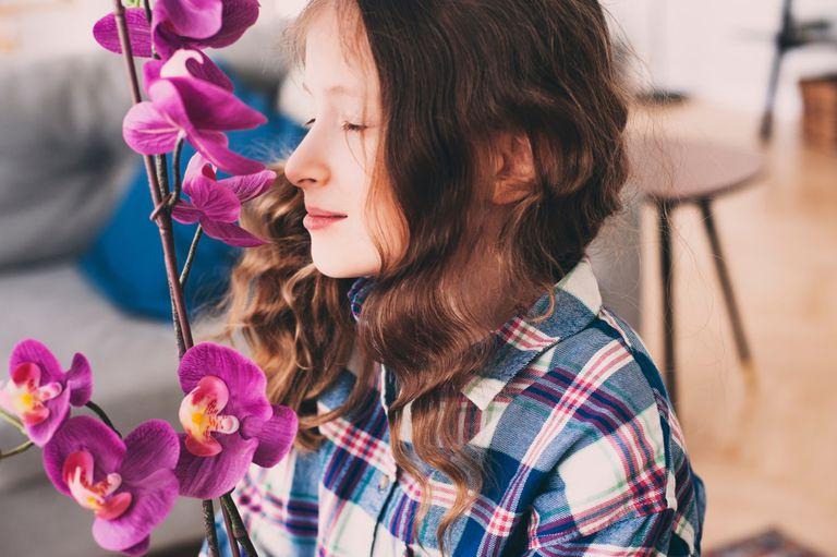 ¿Su hijo es una orquídea o un diente de león?