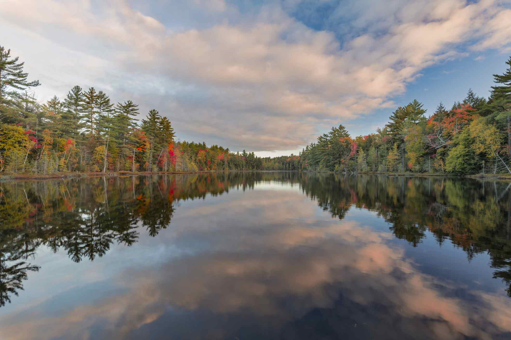 Hiawatha National Forest in Michigan