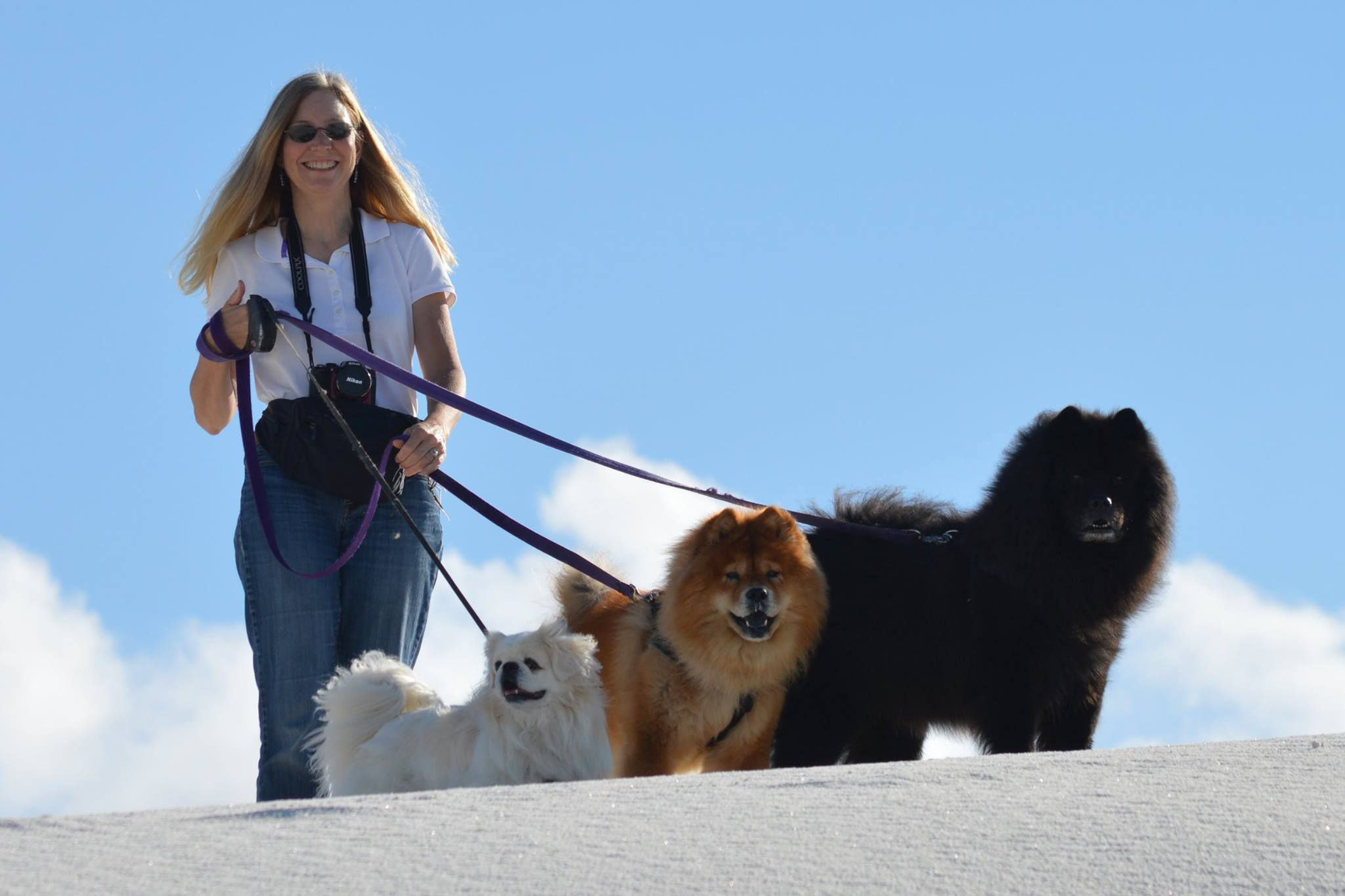 Jeannie Sanke walks with three of her dogs