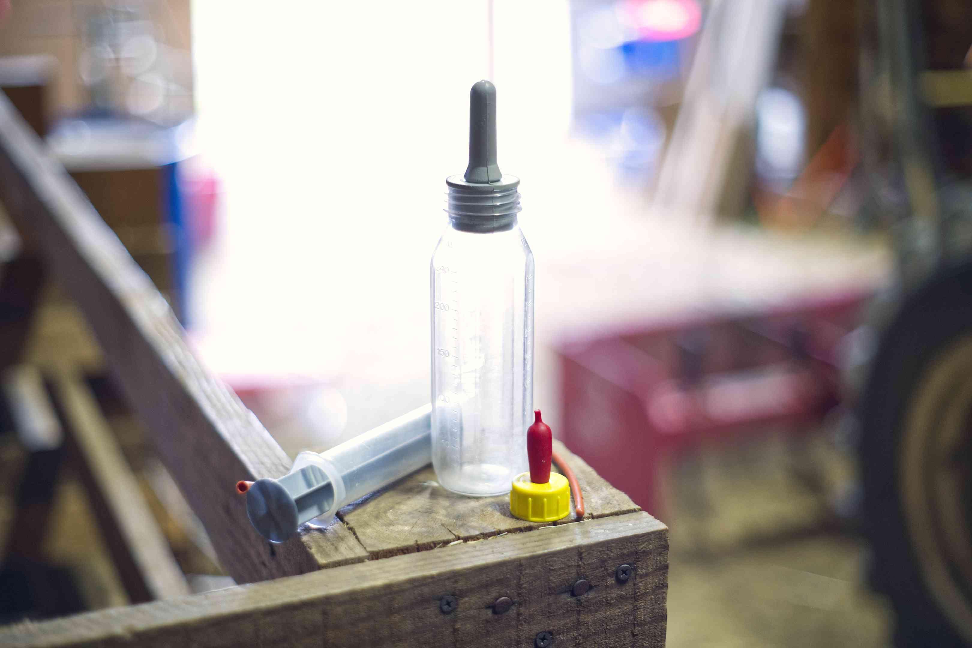 baby goat bottle for feeding rests on wooden beam in farm workshop