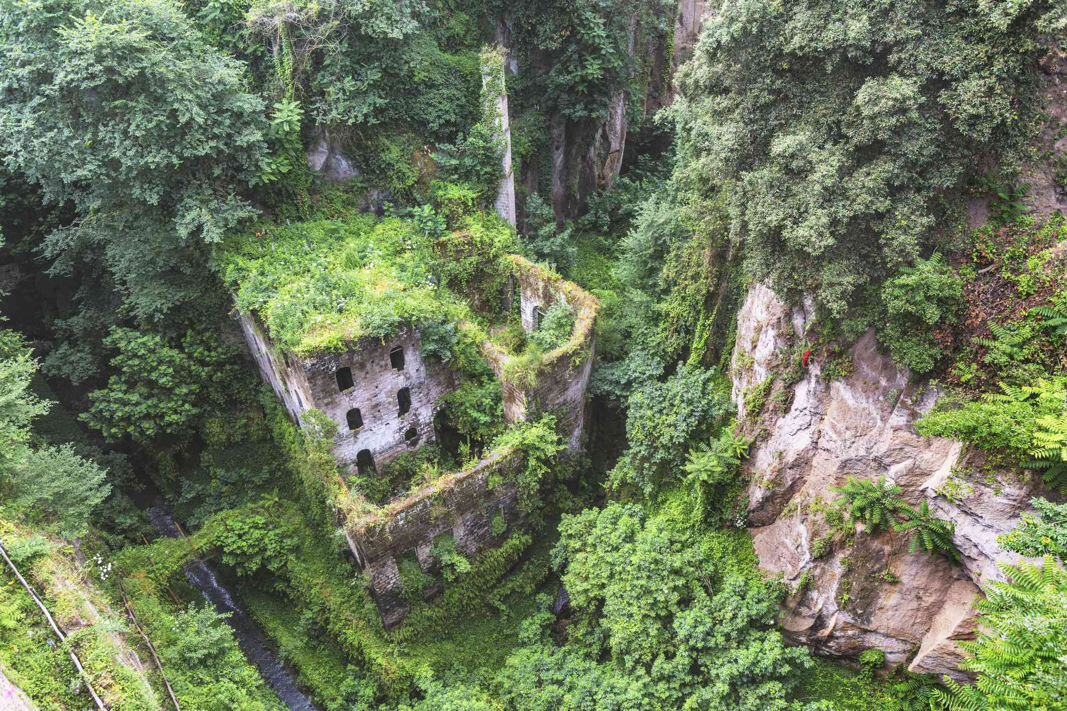 Abandoned mill covered in greenery
