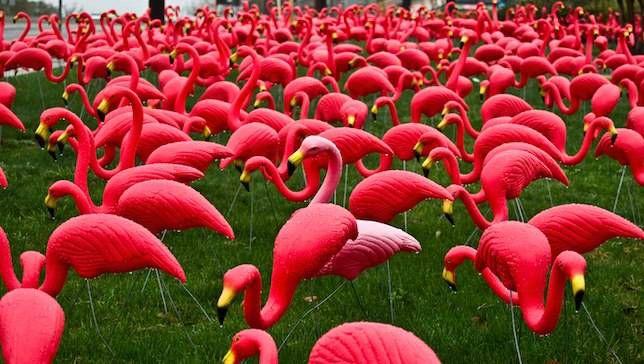 Pink Flamingo Creator Don Featherstone asciende al cielo de los ornamentos del césped