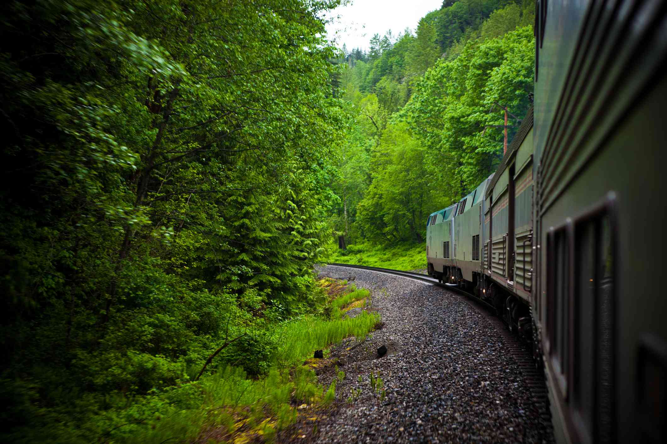 The Empire Builder train in Glacier National Park with green trees on both sides of the tracks