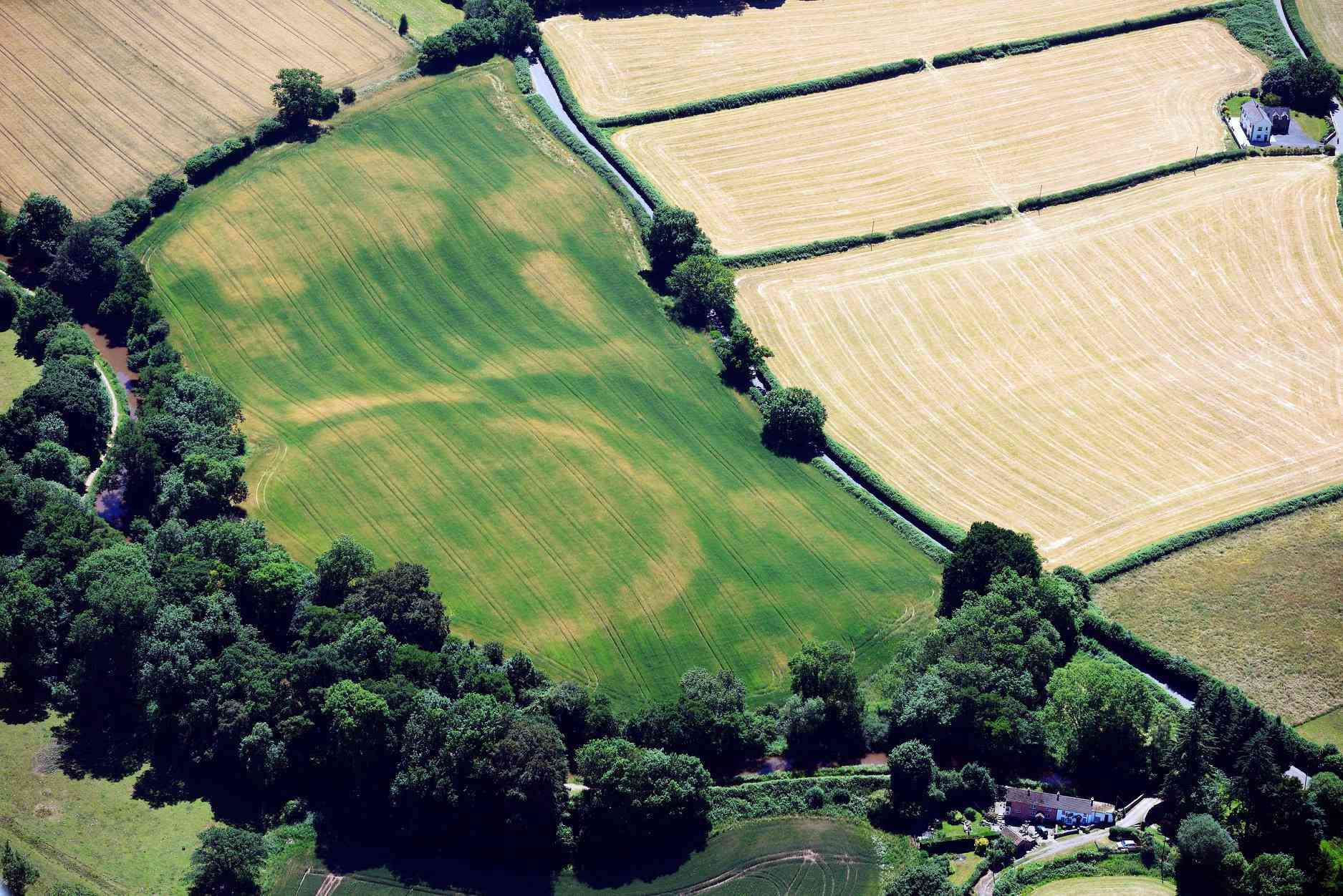 The buried ramparts of Cross Oak Hillfort, Talybont on Usk, showing as cropmarks