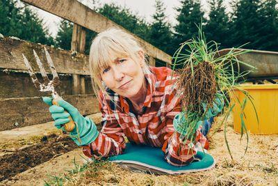 woman weeding in her garden