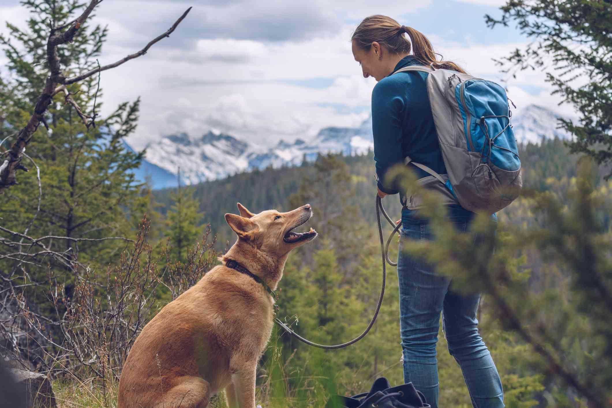 Keeping a dog on leash while hiking