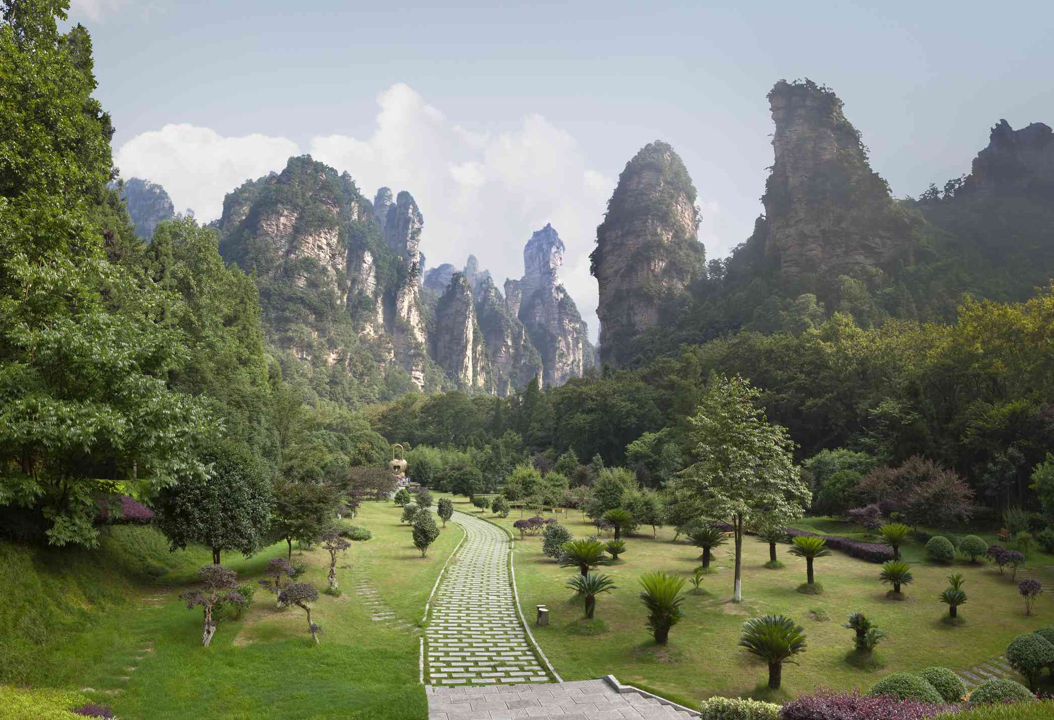 Trees and pathways of Zhangjiajie Forest Park, China
