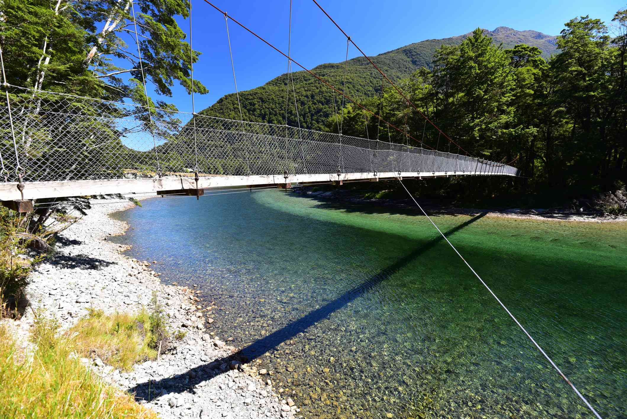 Part of Milford Track: A suspension bridge over the Clinton River, a narrow river with lush, green trees on both sides and mountains and blue sky in the distance