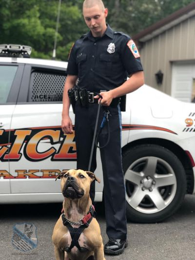 A Dallas police officer and K9