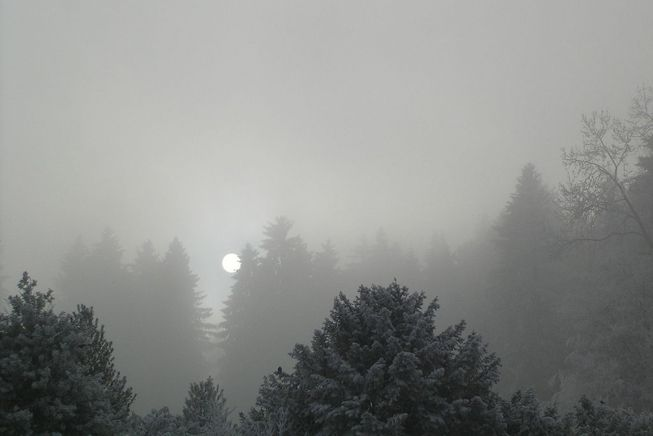 Stratus nebulosus in winter
