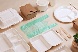 Reusable plastic bag sitting in between foam food trays and containers