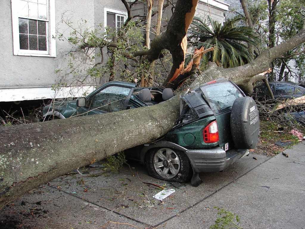 tornado damage in New Orleans