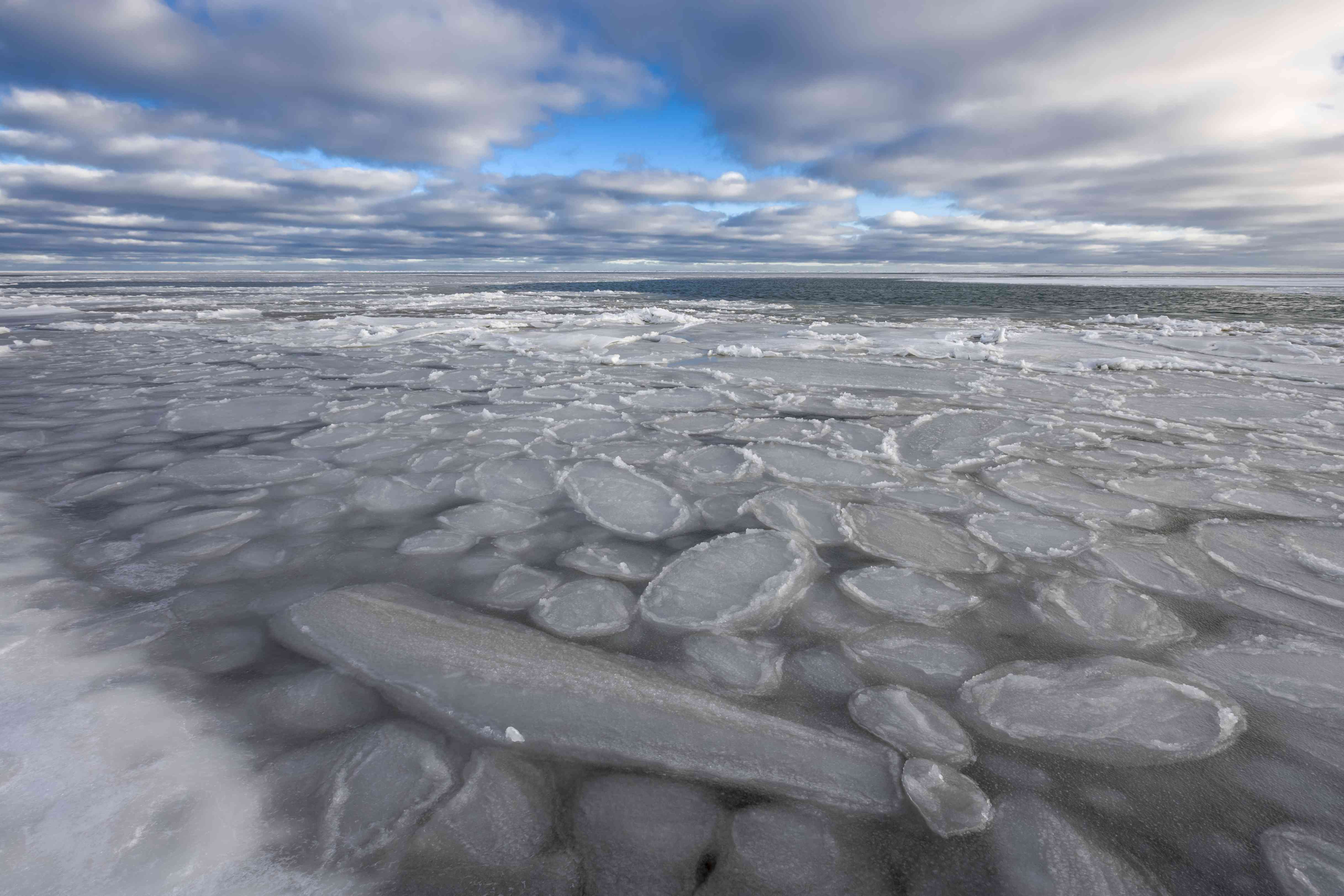 Pancake ice forms on the Beaufort Sea