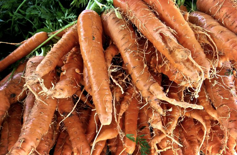 Gnarly, Hairy Carrots