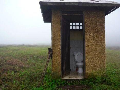 toilet-galapagos-468.jpg