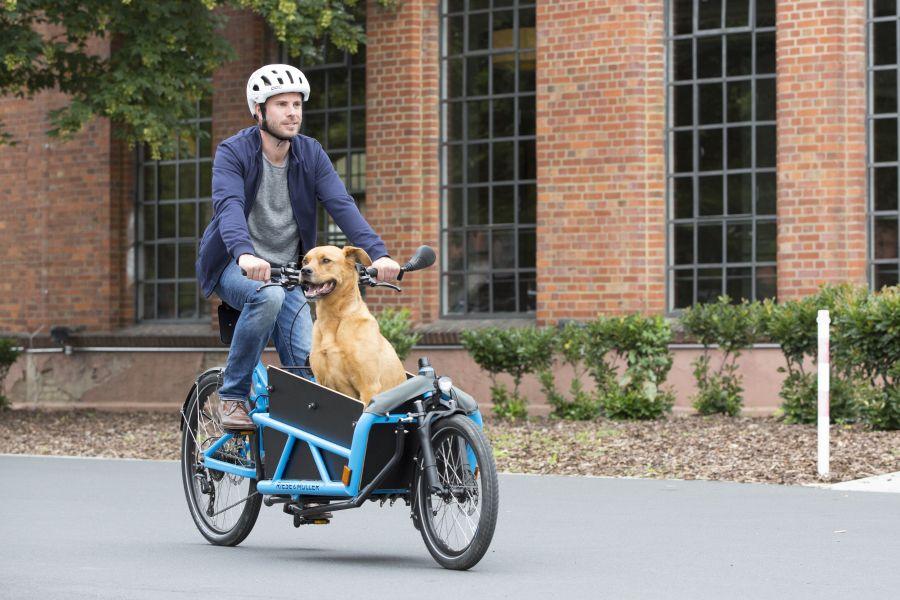 Riese & Muller Load e-cargo bike