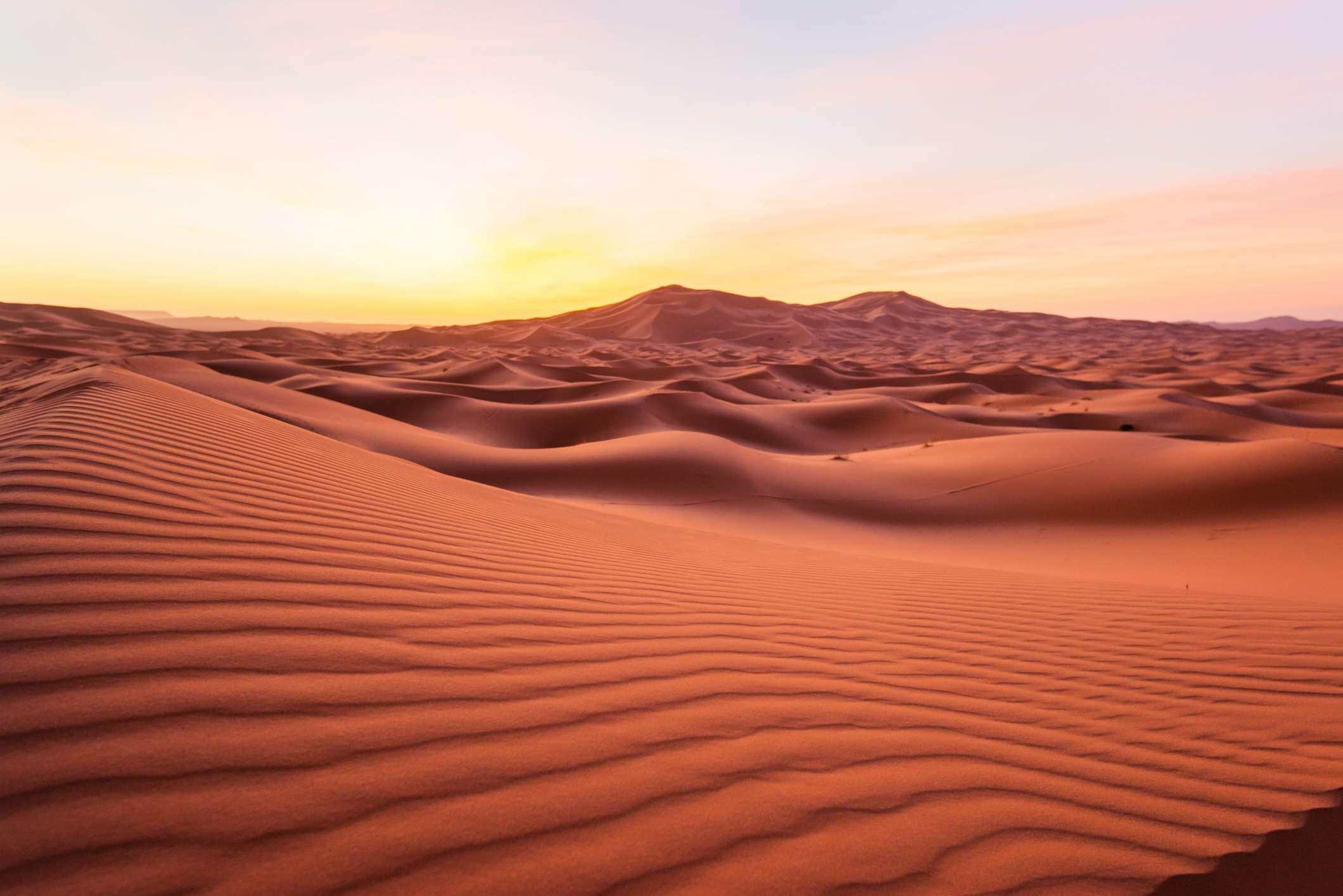 Sahara desert san dunes at sunrise