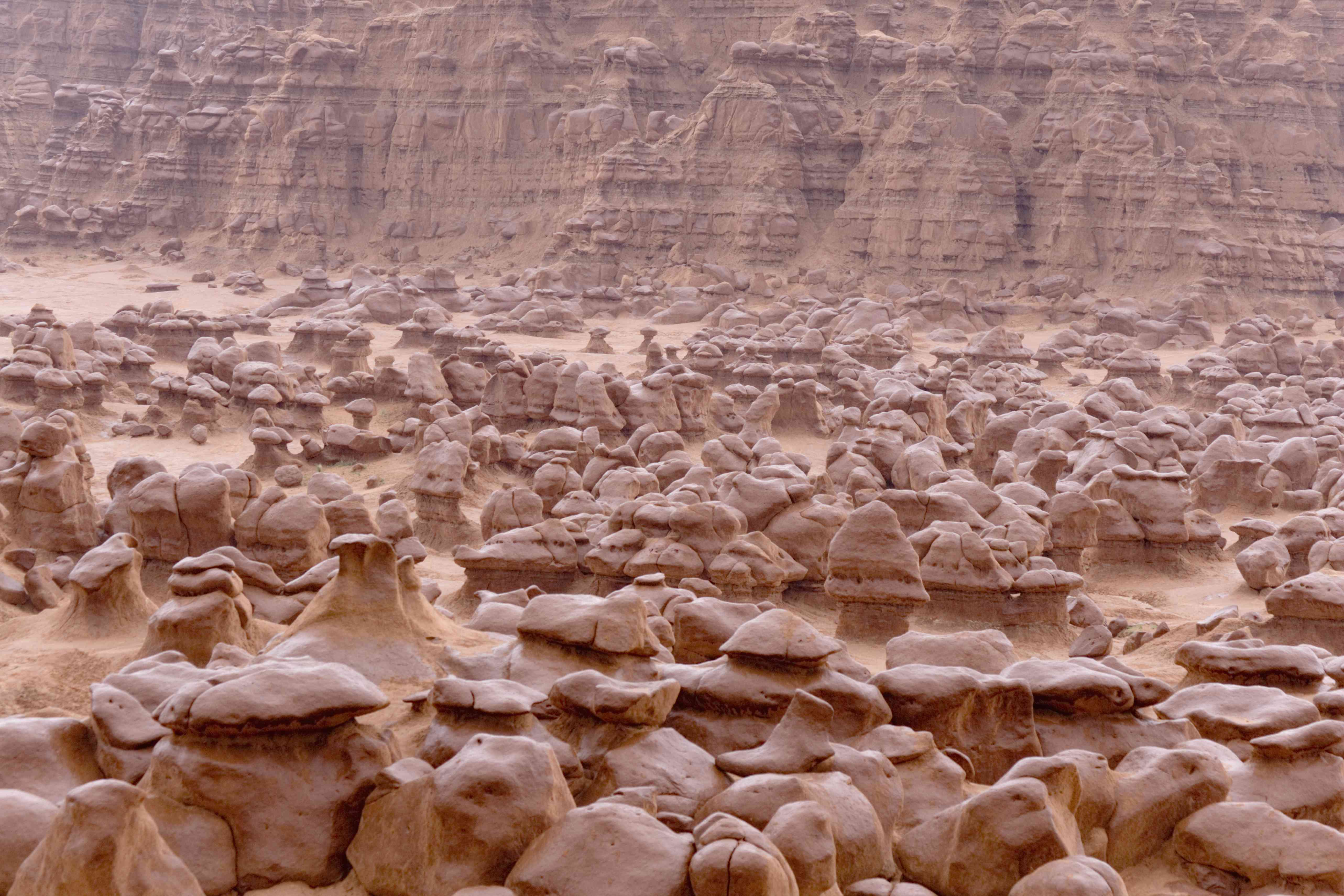 Short hoodoos that look like goblins in red Utah desert