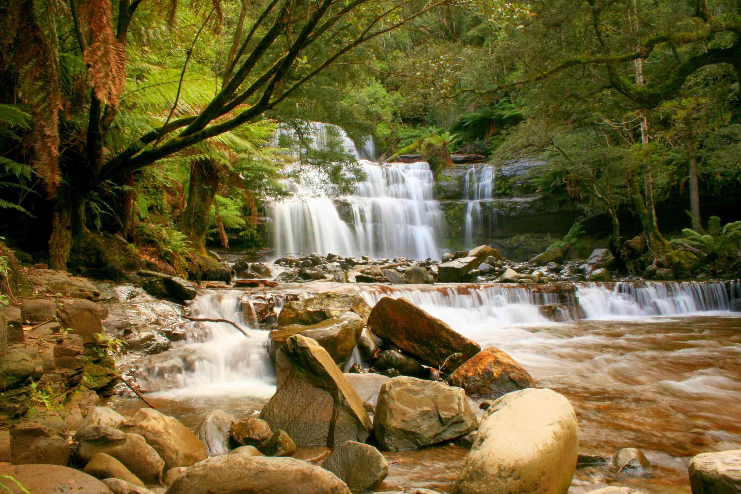 LIffey Falls, a three-tiered waterfall in Tasmania