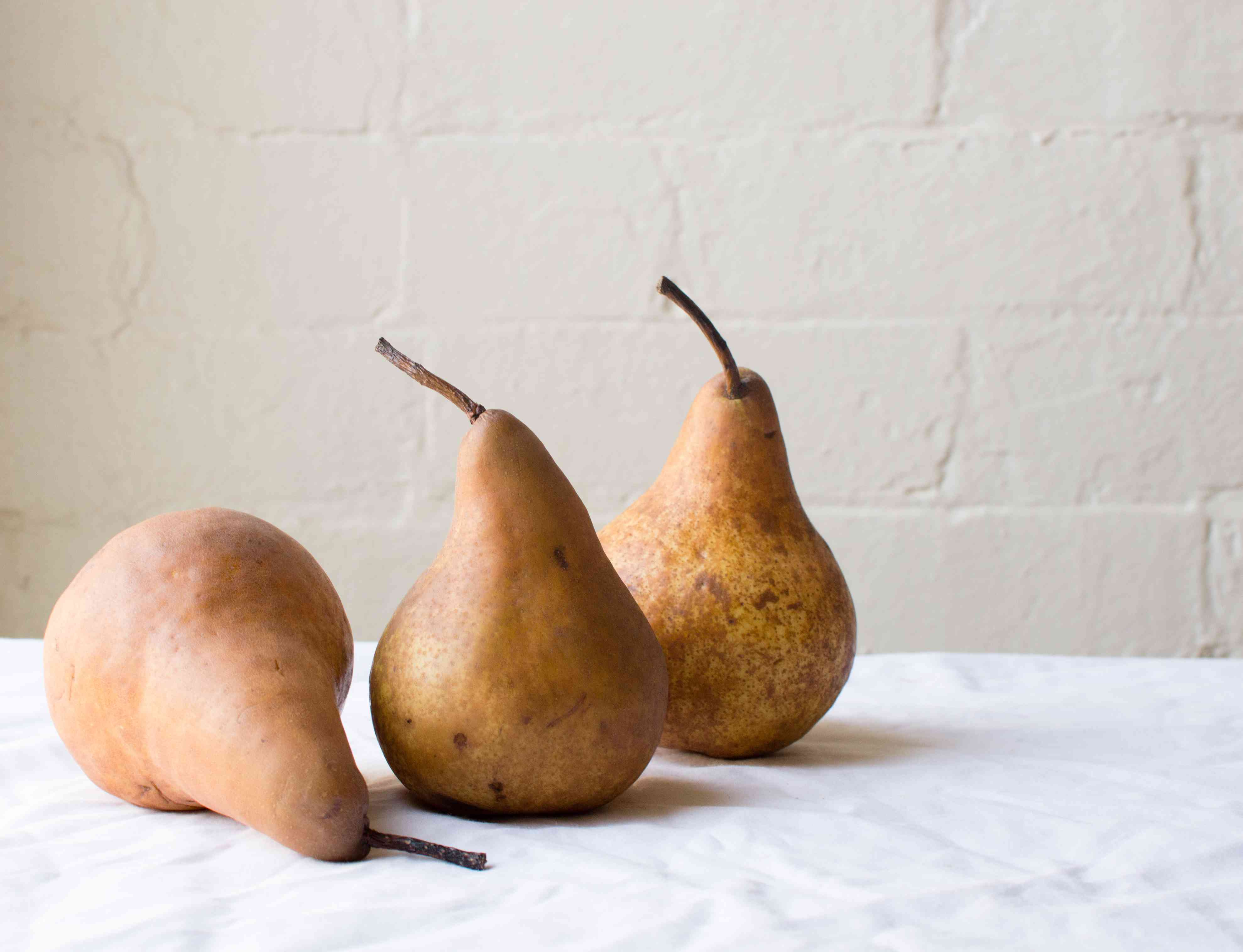 three Bosc pears against white wall