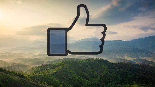 Los grupos ambientalistas que dominan Facebook