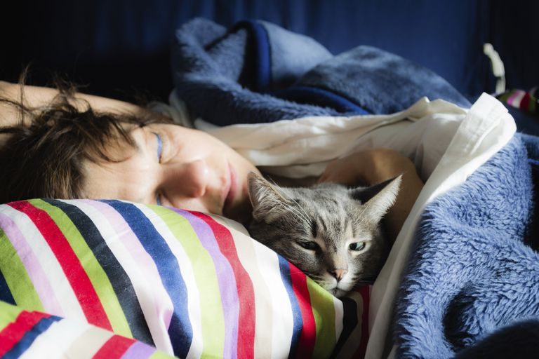 person sleeping in bed next to cat