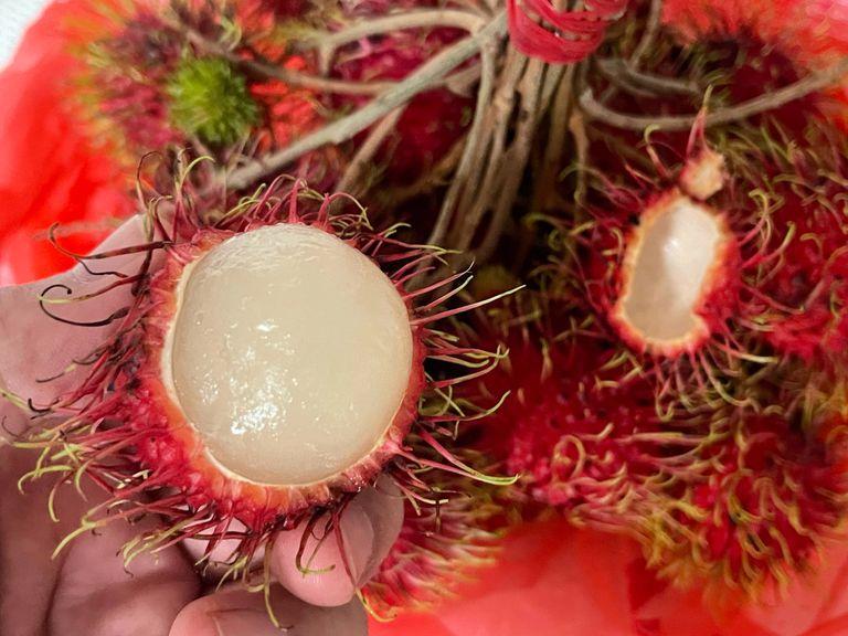Inside fruit of a rambutan