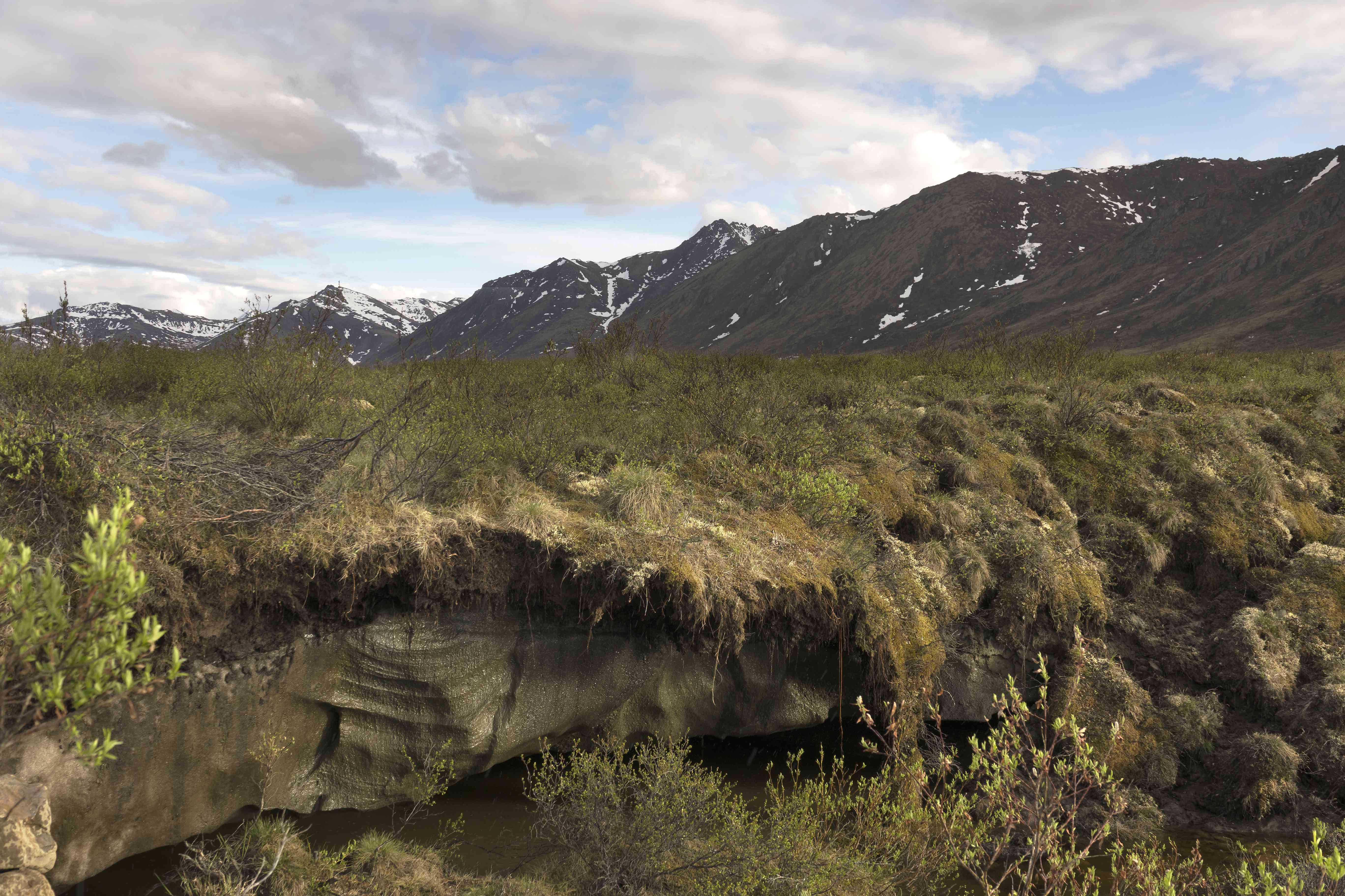 Melting Ice permafrost near Dempster Highway subarctic tundra Tombstone Territorial Park Yukon