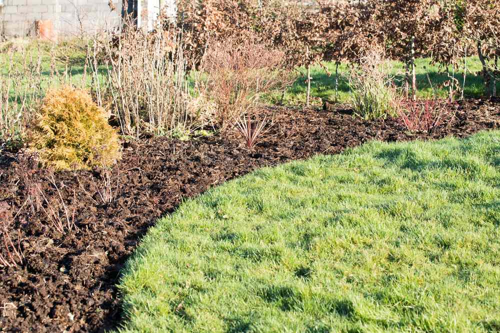 Mulch on a flower bed in the winter