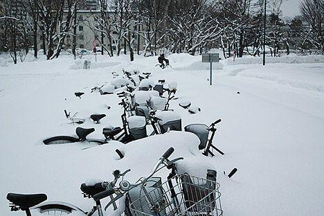 bikes in sapporo japan under snow photo