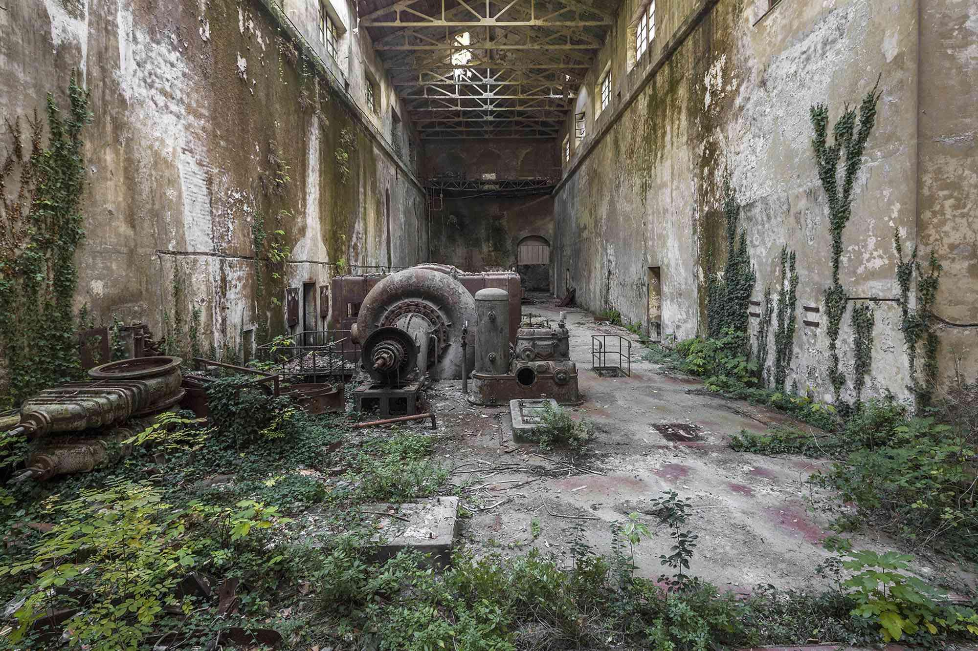 Naturalia II photographs of nature reclaiming abandoned sites Jonk